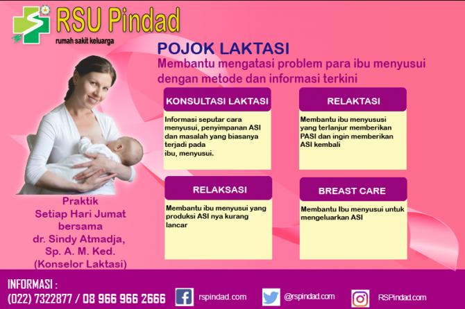 Kini Hadir…., Klinik Laktasi khusus ibu menyusui